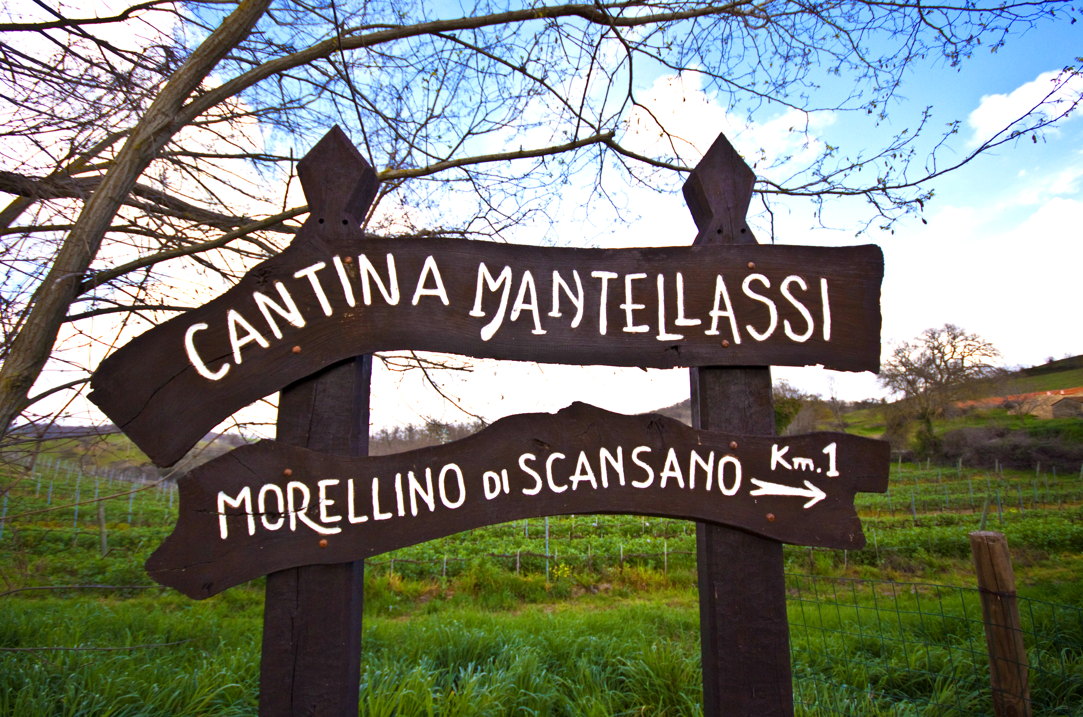 義大利Mantellassi馬得利酒莊