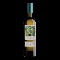 ITPC2205-19 義大利佳樂羅埃洛安聶白葡萄酒 Michele Chiarlo Roero Arneis D.O.C.G. Le Madri